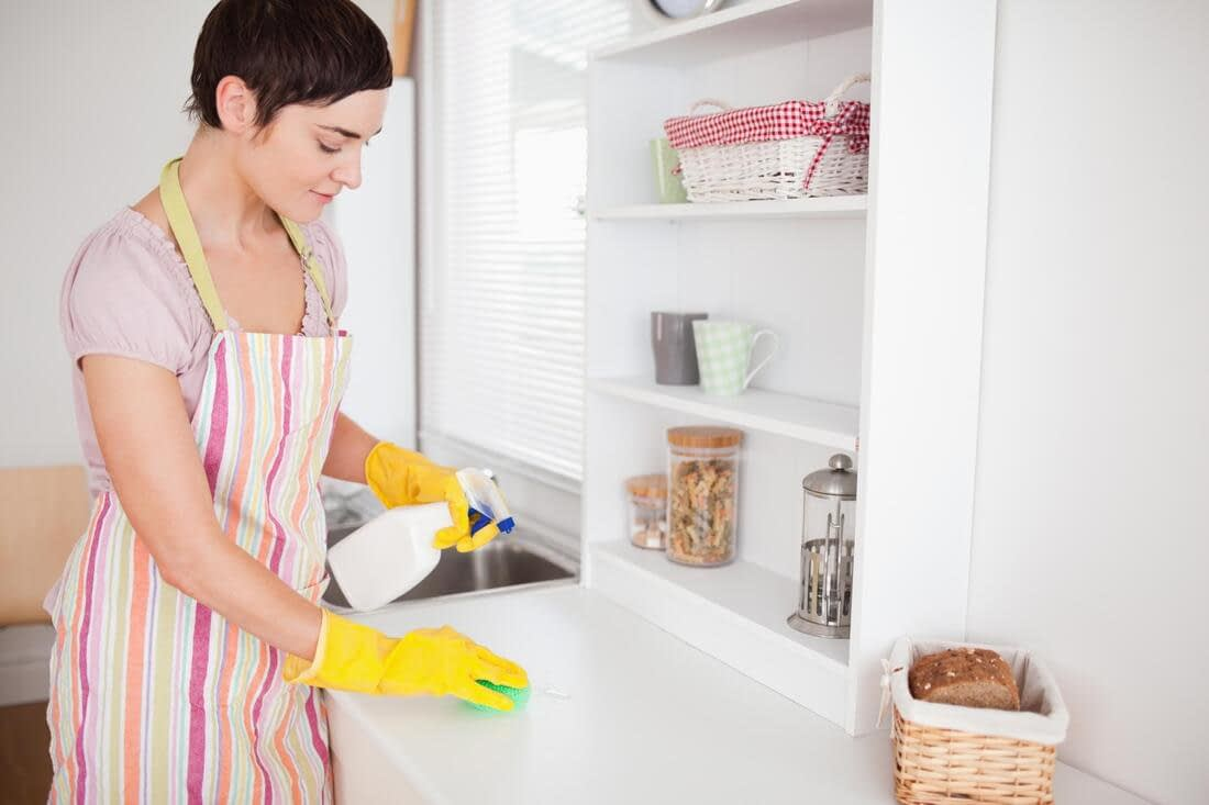 house cleaning services in tampa